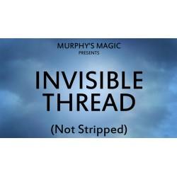 Ata invizibila